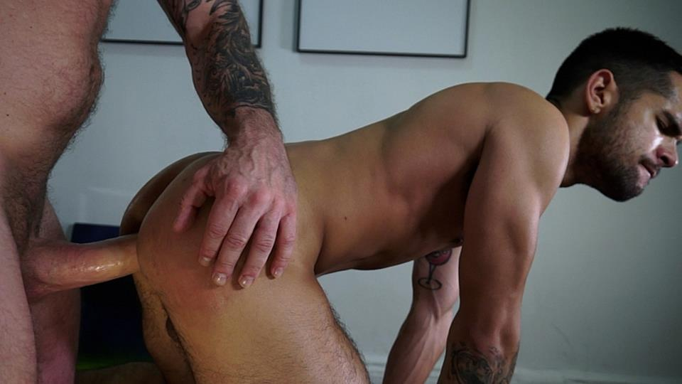 Download Ollie Creampies Ty