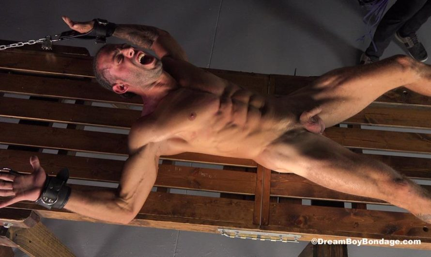 DreamBoyBondage –  Julian – The Wages of Sin – Chapter 9