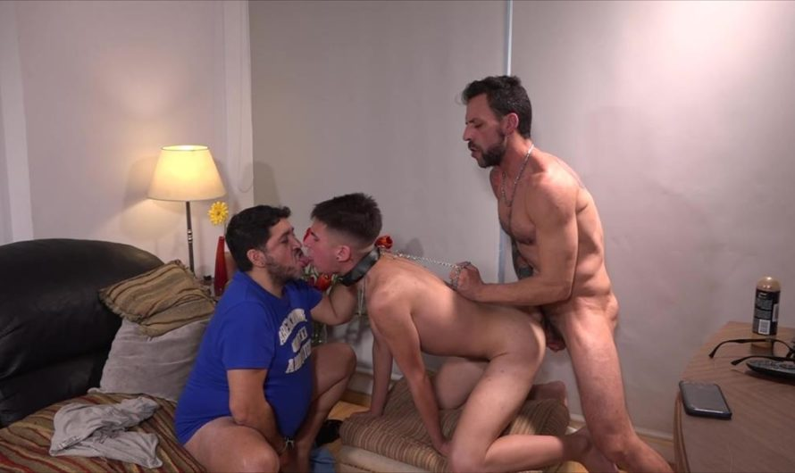 BarebackMeDaddy – Joris, Ferdinand and Nico