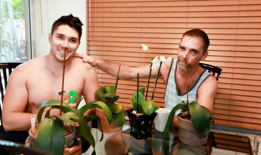 MenOver30 – Domestic Pleasures – Joe Parker, Adrian Suarez