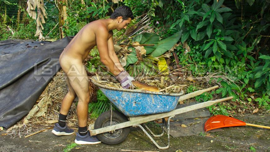 IslandStuds – Hung Hawaiian Lono