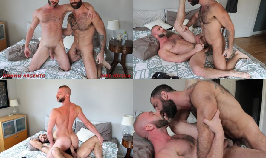 BadPuppy – Jake Nicola, Donnie Argento