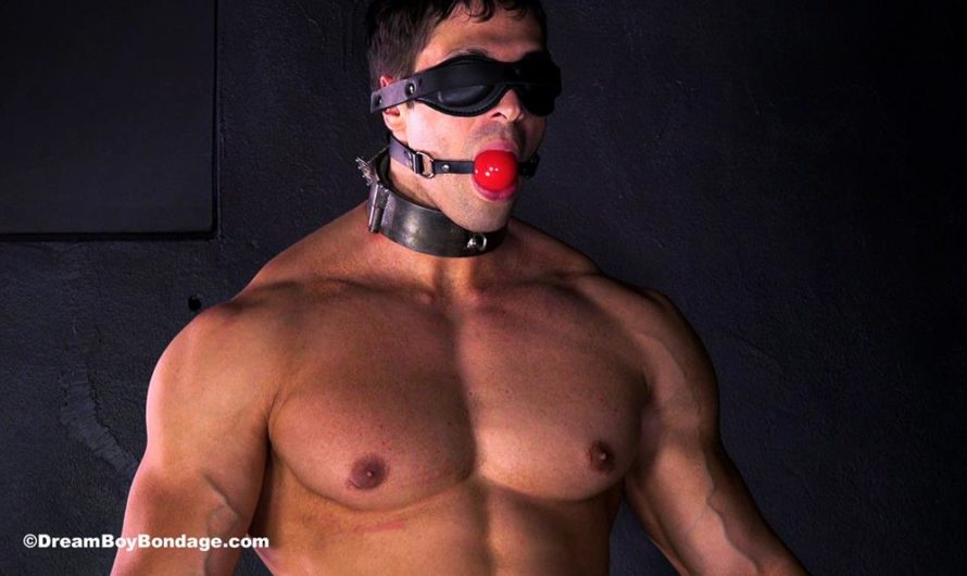 DreamBoyBondage – Bodybuilder Stefano's torture while standing erect continues