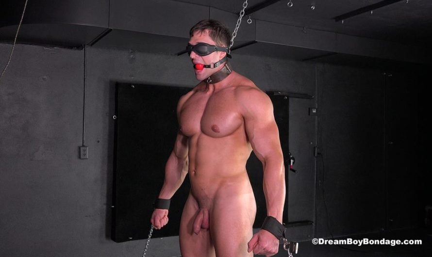 DreamBoyBondage – Stefano is chained naked in our dungeon, blindfolded and helpless