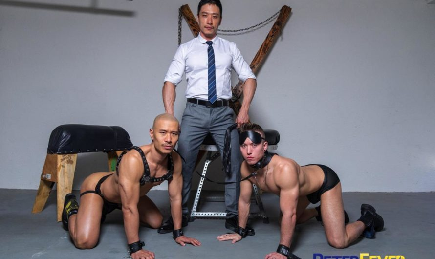 PeterFever – Suit and Tied: Submission – CJ, Duncan Ku, Tyler Slater