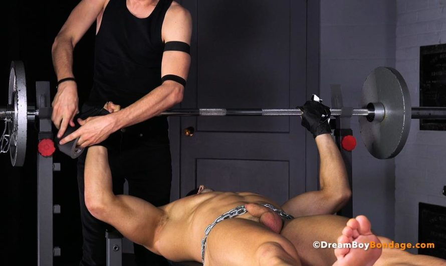 DreamBoyBondage – STEFANO  Blind Muscle – Chapter 11