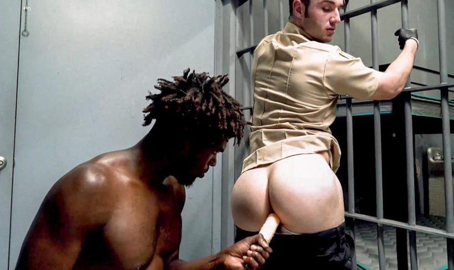 PrisonCocks – Contraband Cock Check