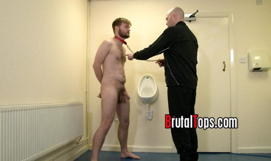 BrutalTops – Master Dave Dominates His Sub In The Toilets