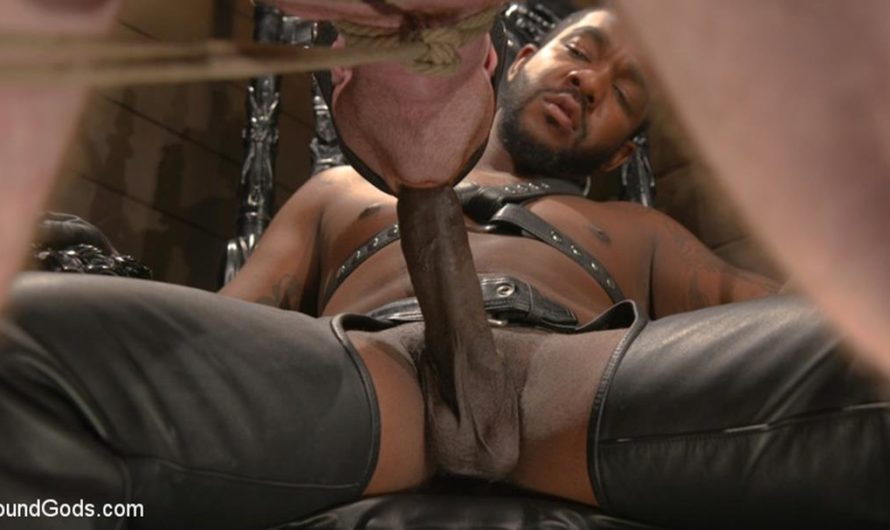 BoundGods – Well Hung Fuck Toys: Giant Dicks Dominate Tight Holes