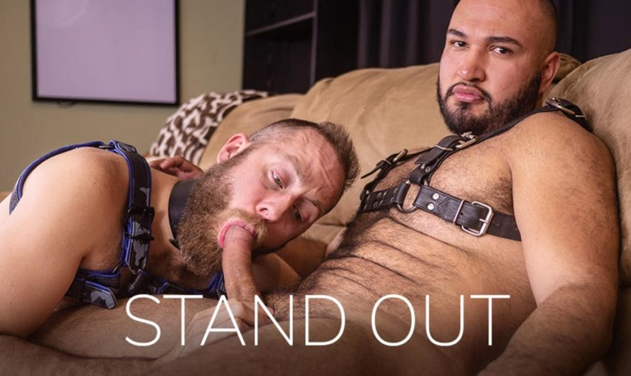 BarebackThatHole – Stand Out
