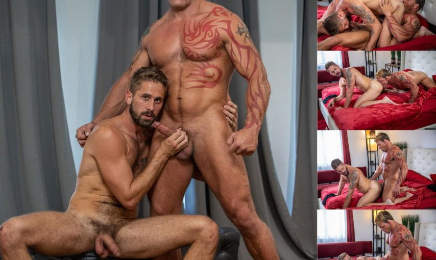 IconMale – Putting On A Show – Wesley Woods, Tristan Brazer