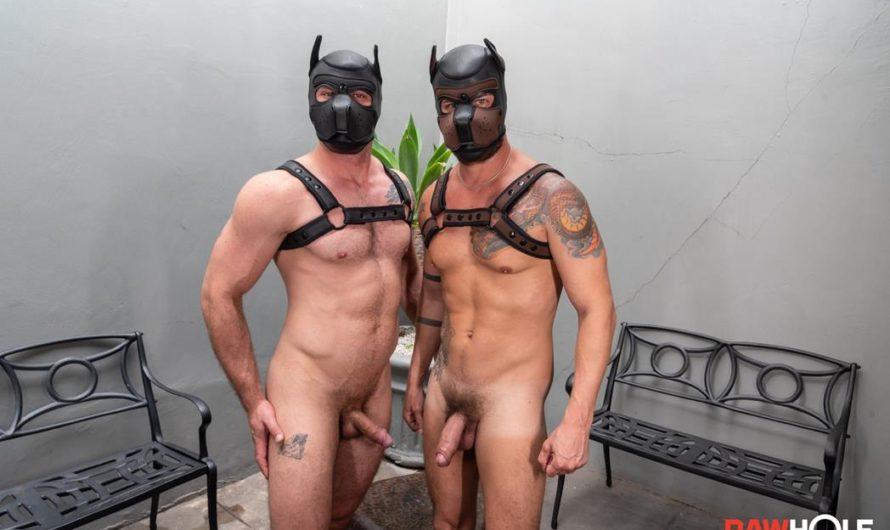RawHole – Pin the Pup Tail in Fernando – Fernando Ferraro, Rick Paixao