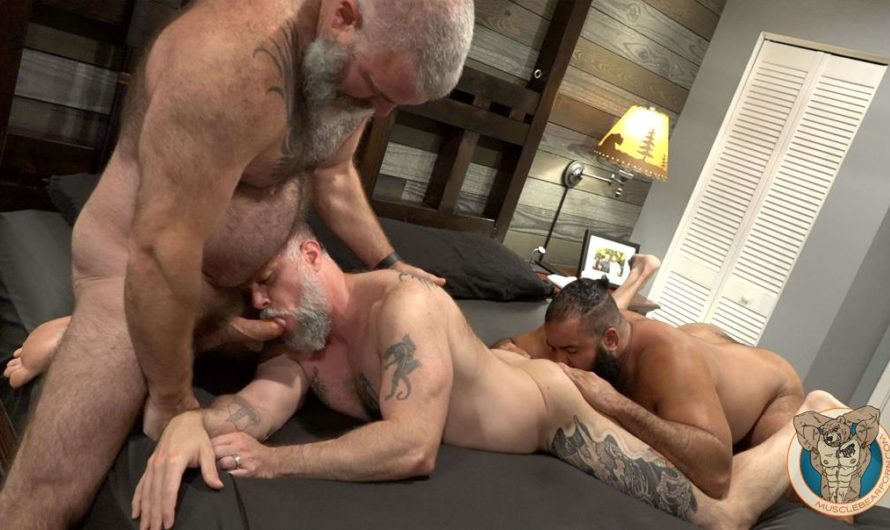 MuscleBearPorn – Barefoot and Bred – Oscar Bear, Liam Angell, Will Angell