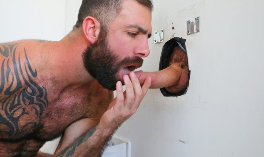 TrailerTrashBoys – Extra Load: You SUCK – Jake Nicola, Drew Sebastian
