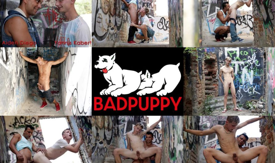 BadPuppy – Aiden Diego, Yannis Kabert