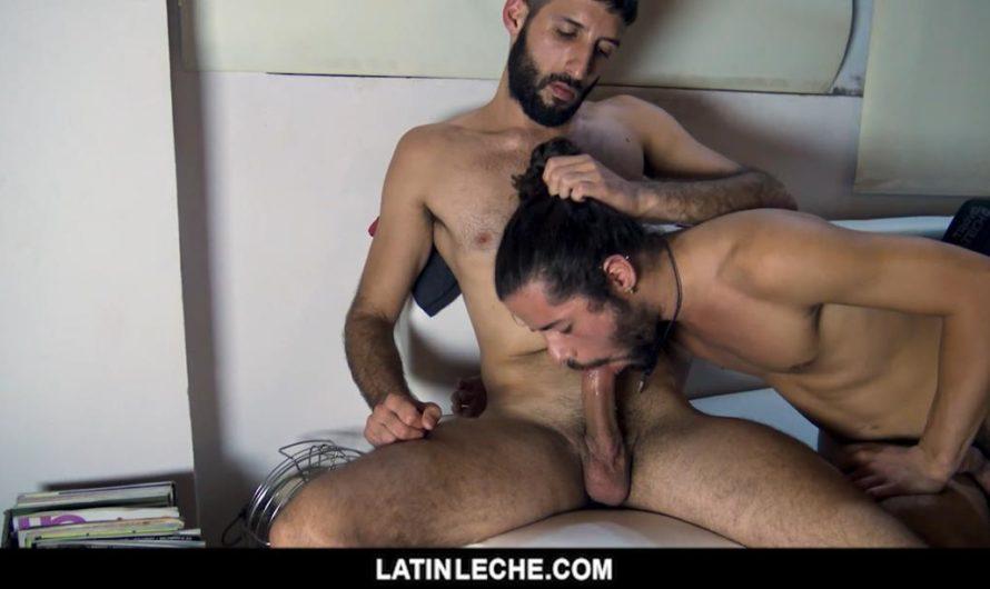 LatinLeche – Numero 19