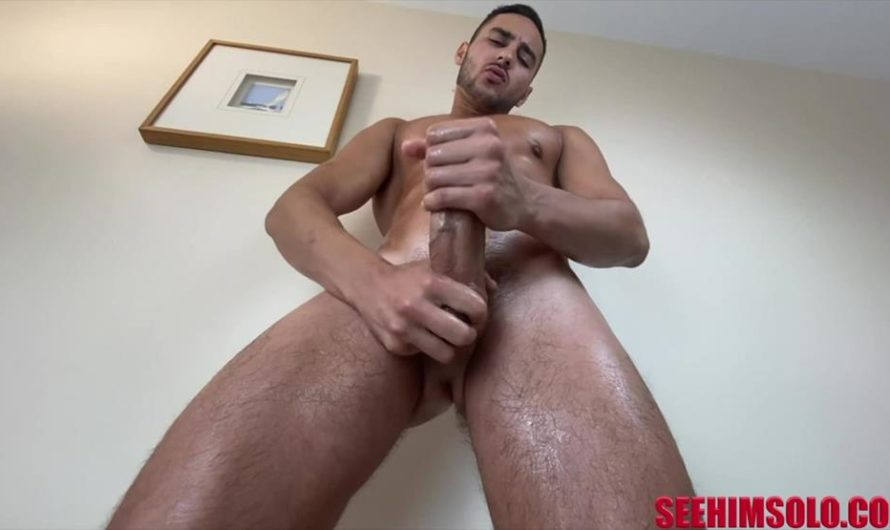 SeeHimSolo – Serbian Stud – Milan