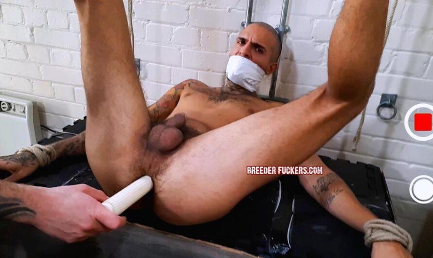 BreederFuckers – Leo-Rex Bunny Stripped & Fucked