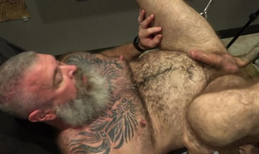 MuscleBearPorn – Pleasing Daddy's Hole – Draven Torres, Will Angell