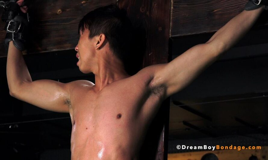 DreamBoyBondage – LEVY FOXX – Police State Torture – Chapter 6